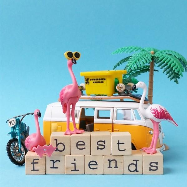 Wenskaart - Flamingo - Best Friends