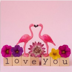 Wenskaart - Flamingo - Love You